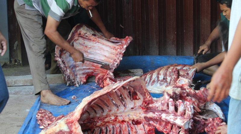 Bungkus Daun Untuk Daging Kurban (3)